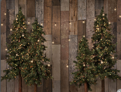 Rustic trees and lights - large